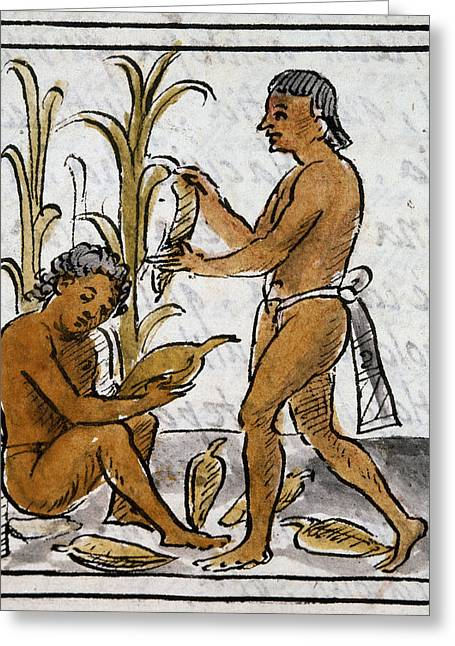 Mexico Aztec Farmers Greeting Card by Granger