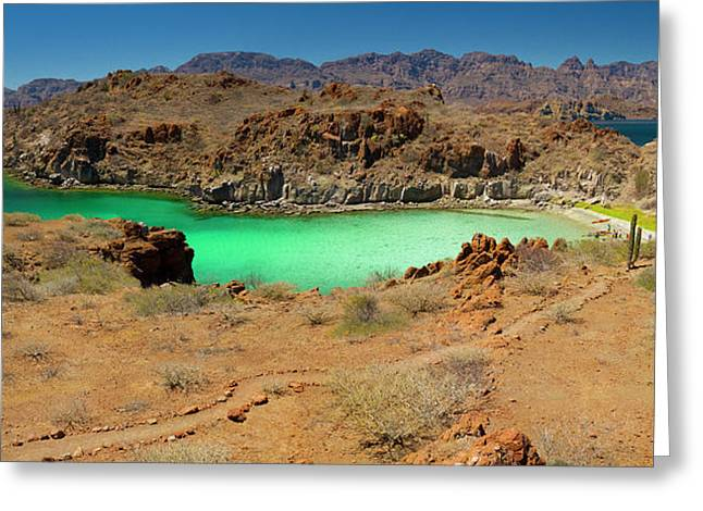 Mexico, Baja, Sea Of Cortez Greeting Card by Gary Luhm