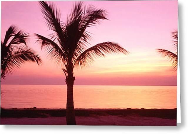 Miami Beach, Florida, Usa Greeting Card by Panoramic Images