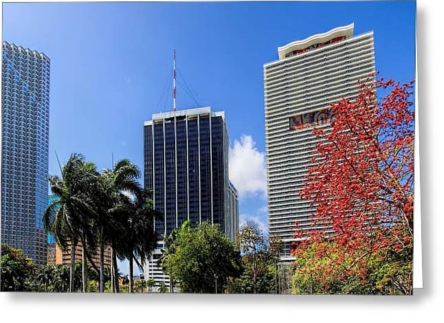 Miami Cityscape   Greeting Card by Rudy Umans