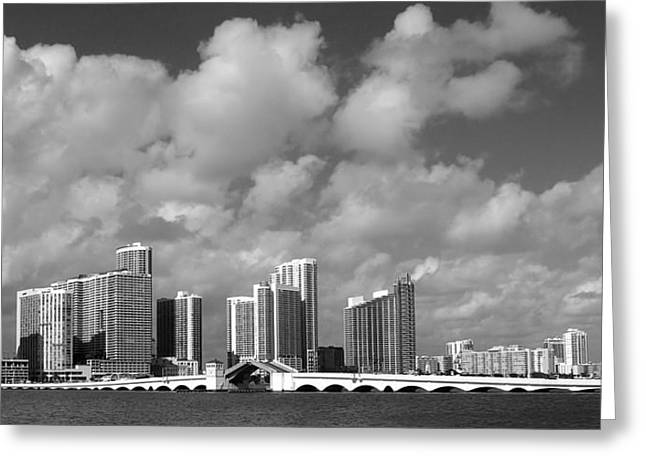 Miami Greeting Card by Raymond Earley