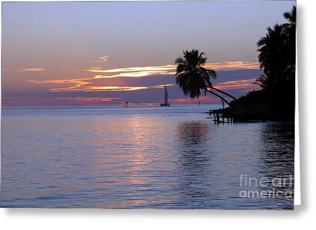 Greeting Card featuring the photograph Miami Sunset by Shelia Kempf