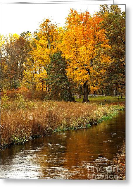 Michigan In The Fall Greeting Card by Gary Richards