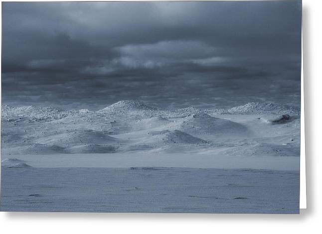 Michigan Sand Dunes In Winter Greeting Card