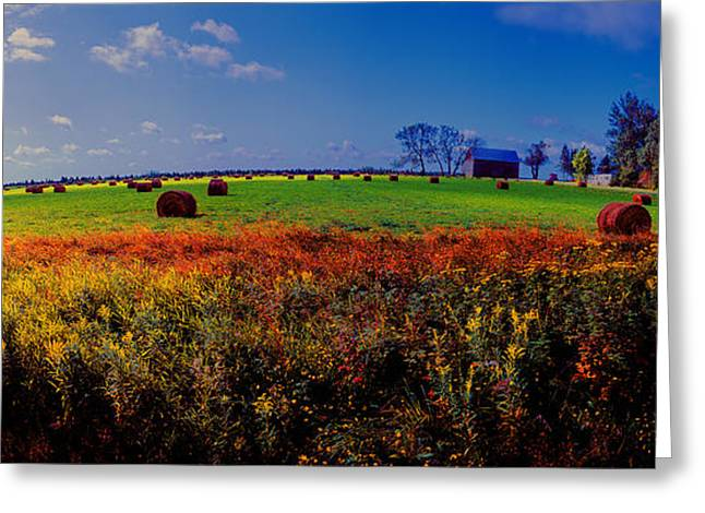 Michigan Uper  Farm Barn And Rolls Of Hay Brimly Michigan Greeting Card