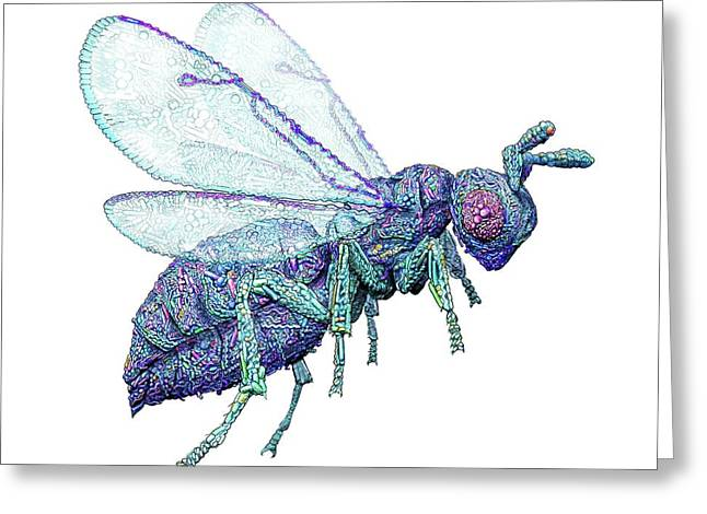 Microbial Wasp Greeting Card by Nicolle R. Fuller