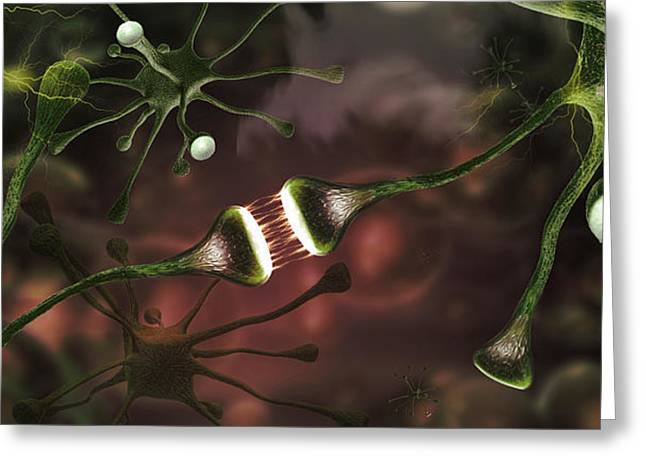 Microscopic Image Of Brain Neurons Greeting Card