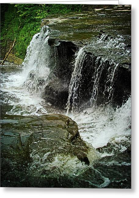 Middle Johnson Falls Greeting Card by Lianne Schneider