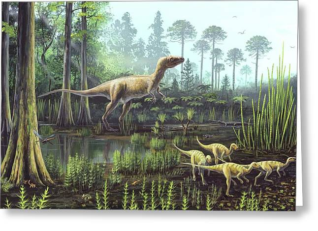 Middle Jurassic Dinosaurs Greeting Card
