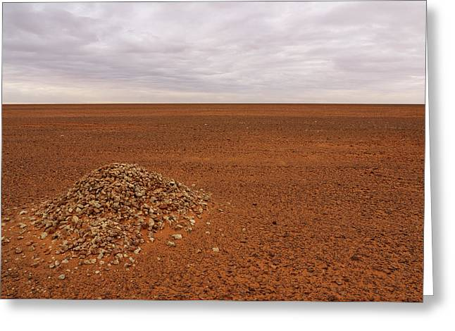 Middle Of Nowhere Greeting Card by Ivan Slosar