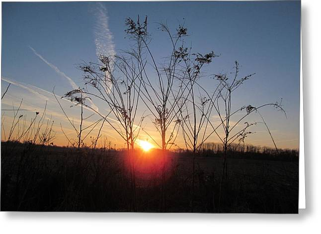 Middle Of The Field Sunrise Greeting Card