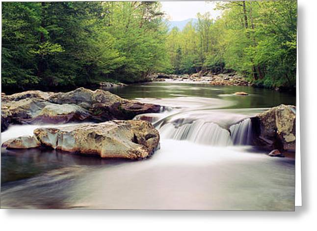Middle Prong Of Little Pigeon River Greeting Card by Panoramic Images