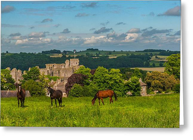Middleham Castle Greeting Card by David Ross