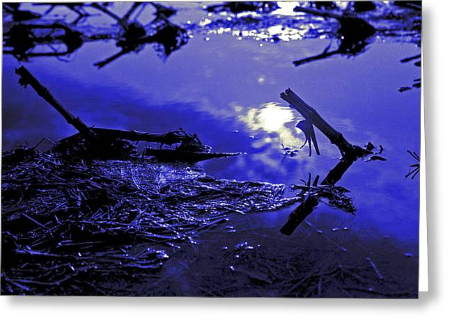 Midnight Blue Greeting Card by Mike Flynn
