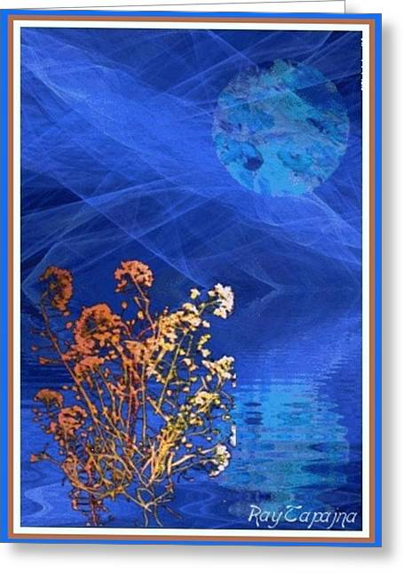Midnight Flowers Greeting Card by Ray Tapajna