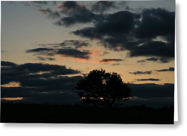 Farm Pasture Midnight Sun  Greeting Card by Neal Eslinger
