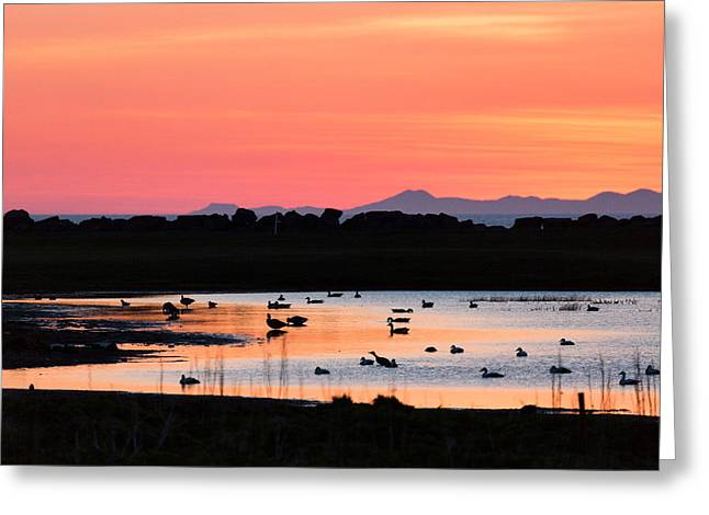 Midnight Sun, Reykjavik, Iceland Greeting Card by Panoramic Images