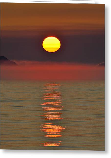 Midnight Sun Greeting Card by Tony Beck