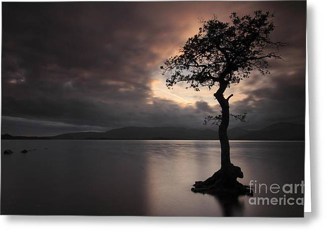 Milarrochy Bay Sunset Greeting Card