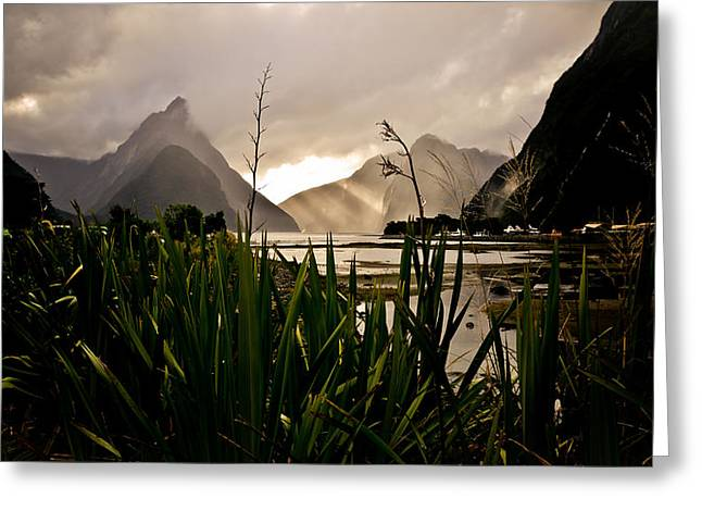 Milford Sound Greeting Card