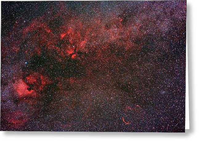 Milky Way And Cygnus Greeting Card by Babak Tafreshi