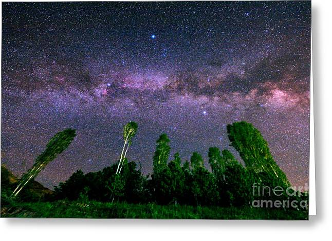 Milky Way In A Starry Sky Greeting Card by Babak Tafreshi