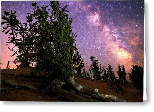 Milky Way Over Bristlecone Pines Greeting Card