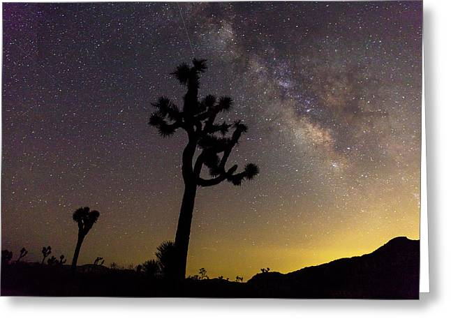 Milky Way Over Joshua Trees At Sunset Greeting Card