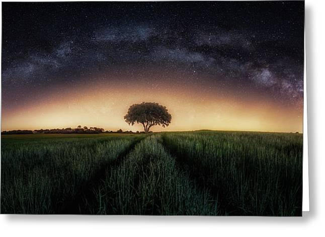 Milky Way Over Lonely Tree Greeting Card
