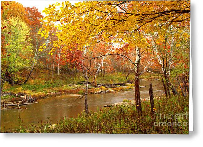 Greeting Card featuring the photograph Mill Creek 1 by Jim McCain