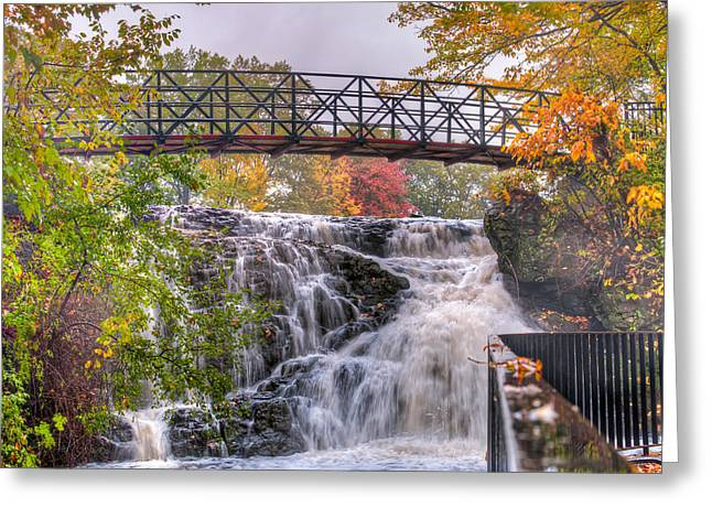 Mill Pond Park Greeting Card