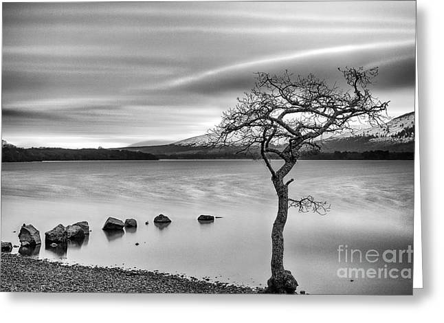 Millarochy Bay Loch Lomond  Greeting Card by John Farnan