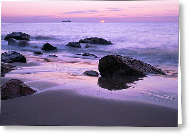 Millennium Sunrise Singing Beach Greeting Card