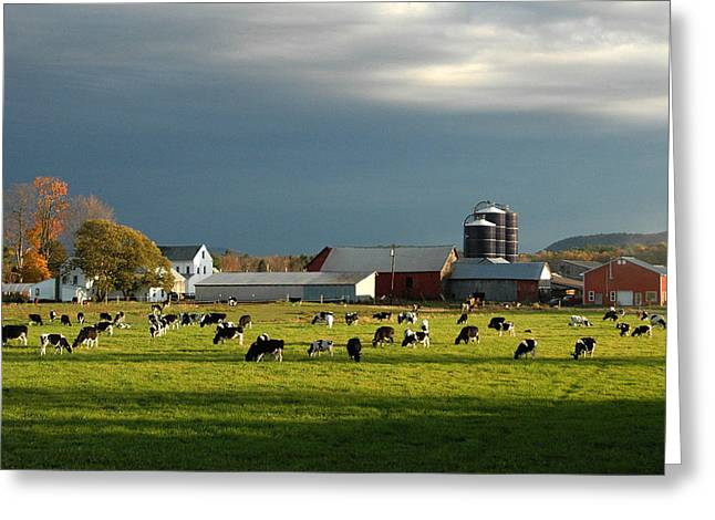 Greeting Card featuring the photograph Miller Farm by Paul Miller