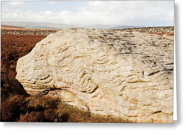 Millstone Grit Boulders Greeting Card by Ashley Cooper
