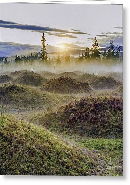 Mima Mounds Mist Greeting Card