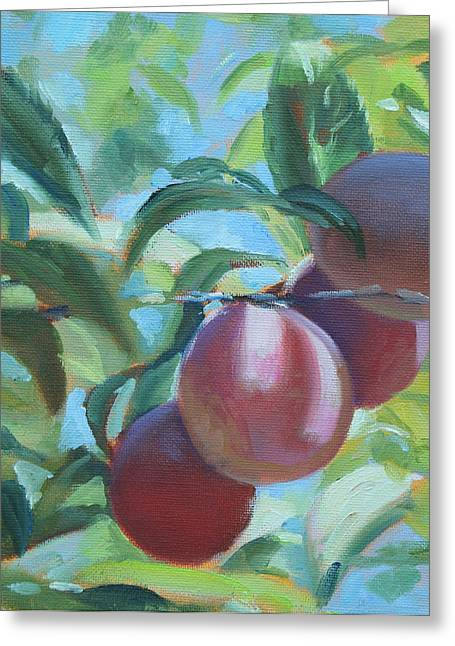 Mimi's Plums Greeting Card
