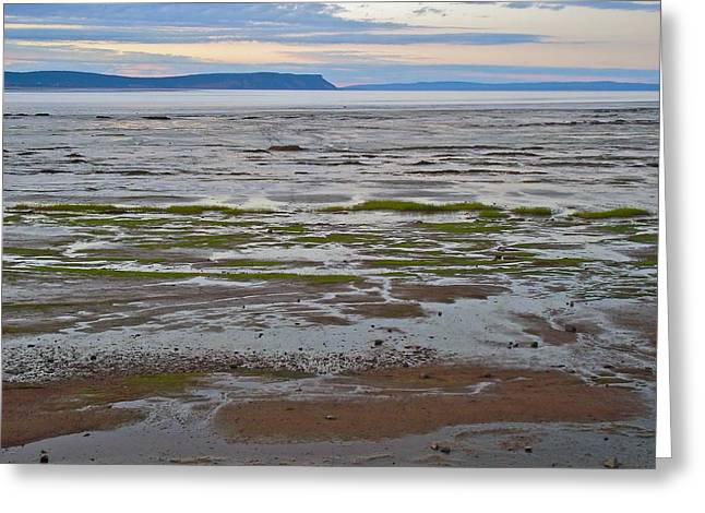 Minas Basin At Dusk In Fundy Bay Near Grand Pre-ns Greeting Card by Ruth Hager