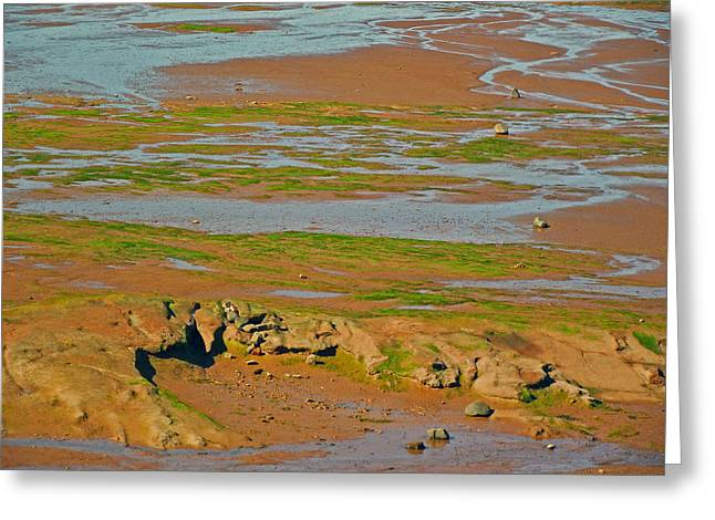 Minas Basin In Afternoon At Fundy Bay Near Grand Pre-ns Greeting Card by Ruth Hager