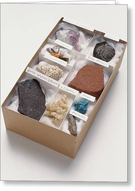 Mineral And Rock Samples Greeting Card