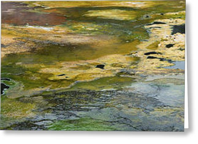 Mineral Springs At The Emerald Terrace Greeting Card by Panoramic Images