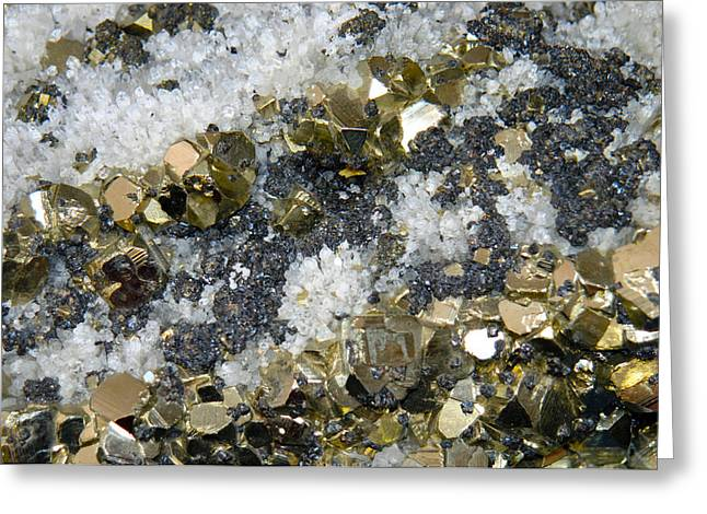 Minerals 4 Greeting Card by T C Brown