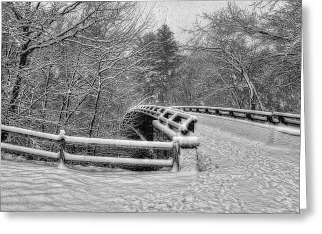 Mine Falls Park - Nashua New Hampshire Greeting Card by Joann Vitali