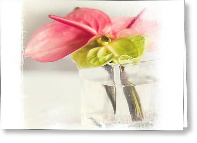 Mini Bouquet With Anthurium. Elegant Knickknacks From Jennyrainbow Greeting Card by Jenny Rainbow