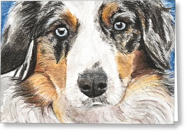 Miniature Australian Shepherd Greeting Card