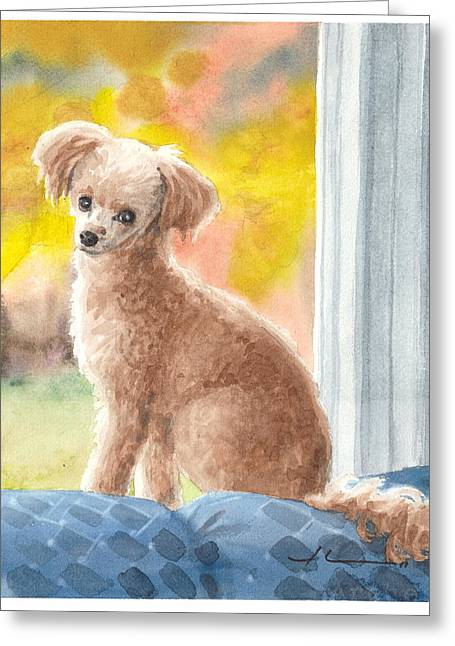 Miniature Poodle Watercolor Portrait Greeting Card by Mike Theuer
