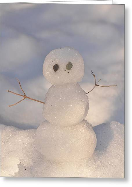 Miniature Snowman Portrait Greeting Card by Nancy Landry