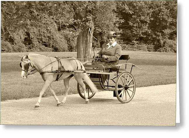 Miniature Two Wheel Cart Greeting Card by Wayne Sheeler