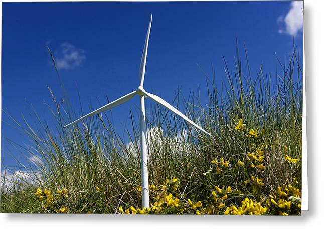 Miniature Wind Turbine In Nature Greeting Card