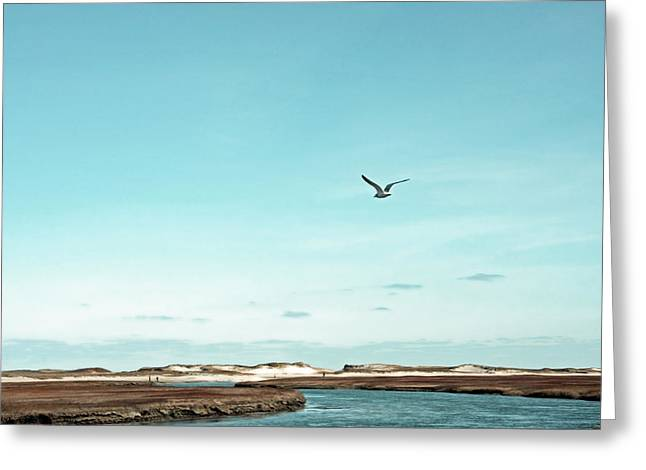 Minimalist Blue And Brown Seascape Greeting Card by Brooke T Ryan